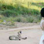 Safari Wedding